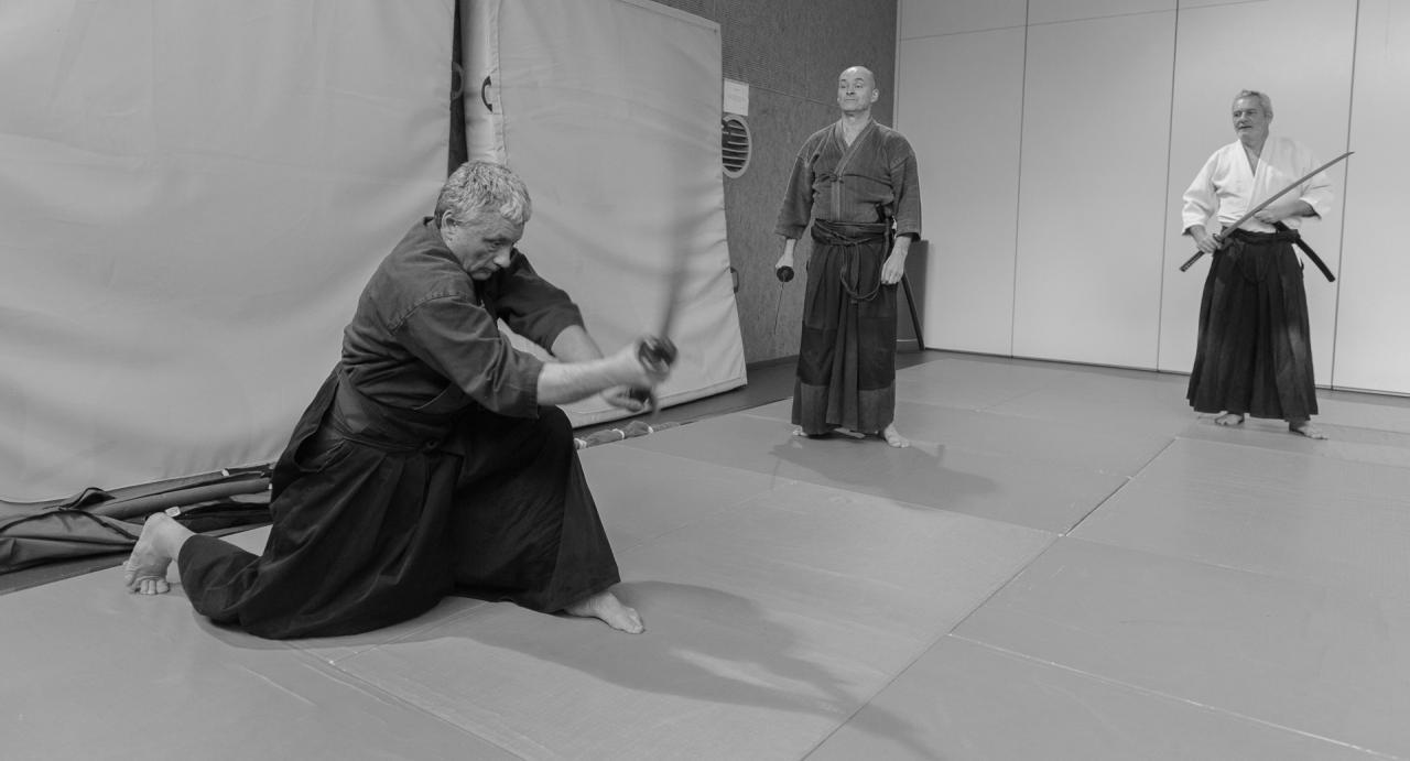 Iaido-Kenjustu 9556-2
