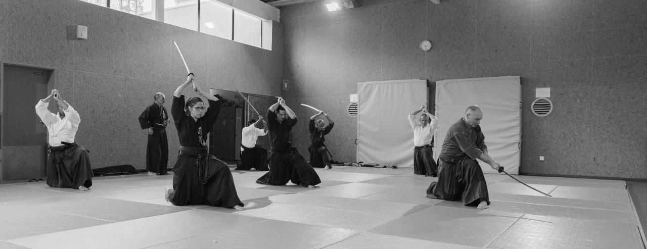 Iaido-Kenjustu 9565-2