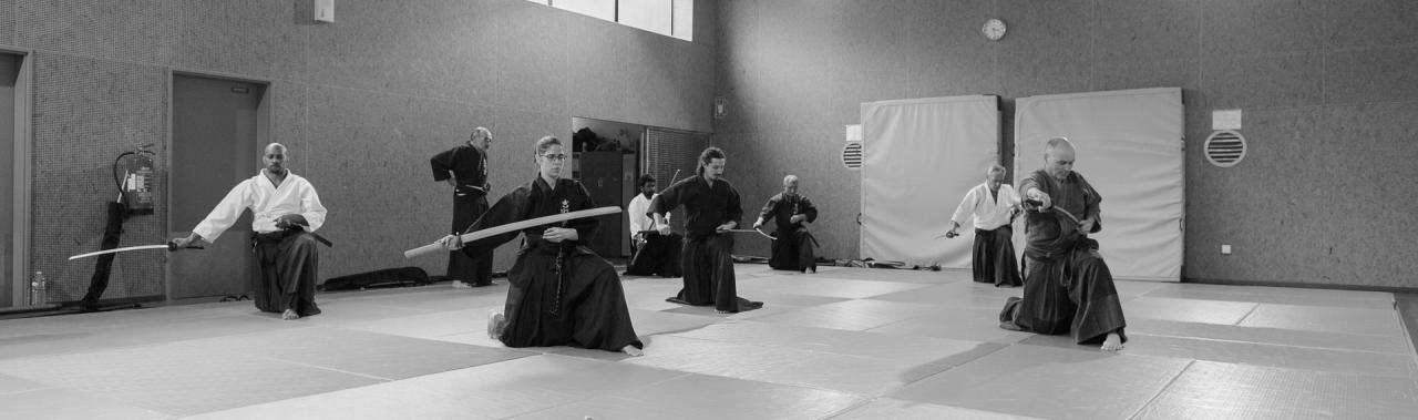 Iaido-Kenjustu 9566-2