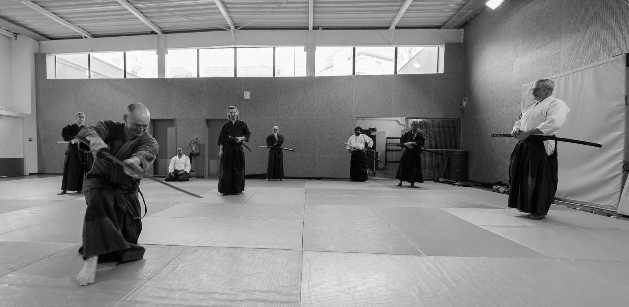 2016-03-19- Comparaison Iaido - Kenjustu